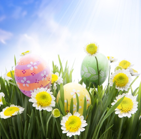 Easter Greeting Card background photo