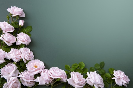 flower Background for greeting card Stock Photo - 10489446