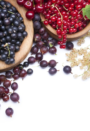 red currants: Healthy eating