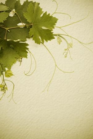 bodegas: el concepto de dise�o para una lista de vinos Foto de archivo