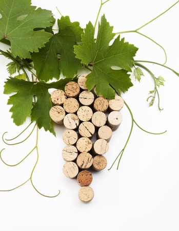 uvas: vino el concepto de dise�o lista