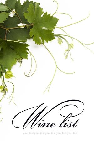 wei�e trauben: Konzept Weinkarte Design