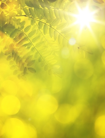 Art abstract autumn background Vector