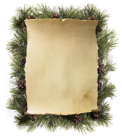 fir twig: frame made of fir branches