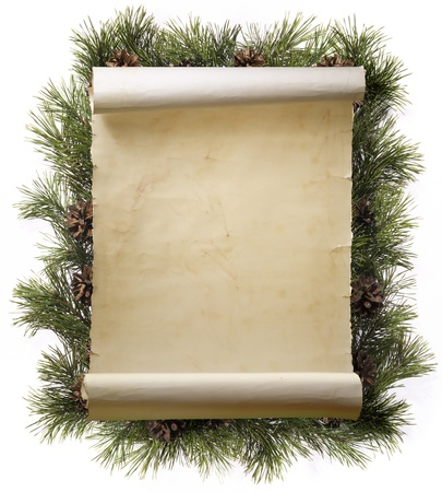 frame made of fir branches