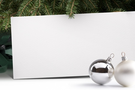 Live Christmas tree on a white background