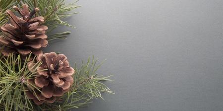 pine cones: christmas tree