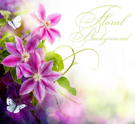 flowers close up: Abstract spring floral background for design