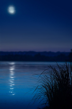 Beach and water in the moonlight Stock Photo - 10542029