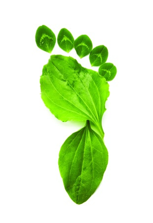 huellas de pies: s�mbolo verde ecolog�a del pie de impresi�n Foto de archivo