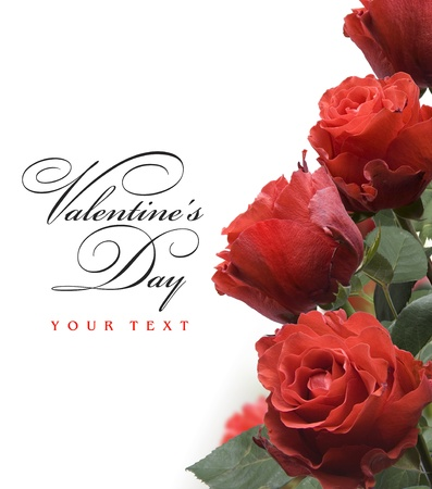 greeting card with red roses  Stock Photo - 10542206