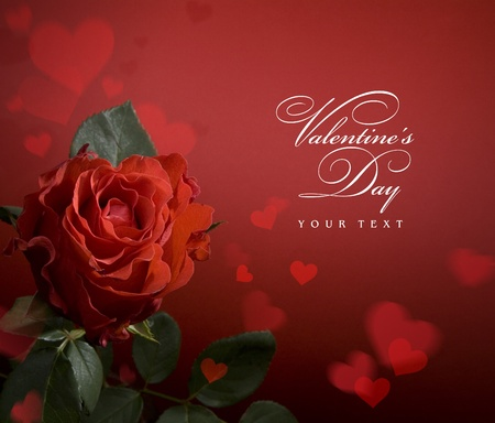greeting card with red roses and heart Stock Photo - 10542228