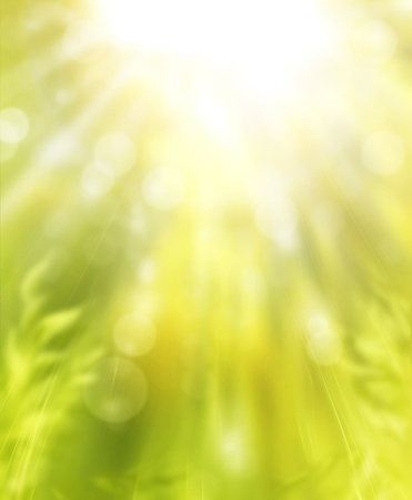 art spring background Stock Photo - 10541888