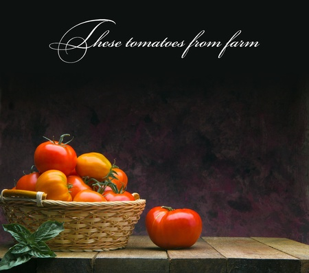 These tomatoes from farm photo