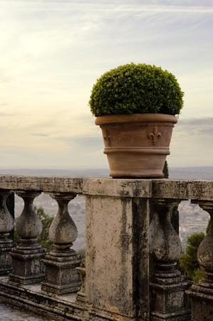 Art Romantic landscape photo