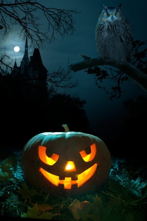 Scary pumpkin, Owl and the castle on Halloween nigh