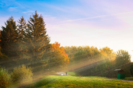 sunrise in the morning in autumn park Stock Photo - 10958854