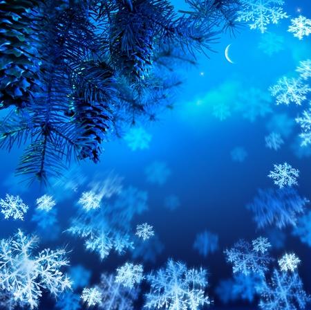 branche sapin noel: Concevoir une carte de No�l avec une branche d'arbre de No�l contre le ciel bleu nuit