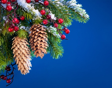 sheltered: Art Christmas tree sheltered snow Stock Photo