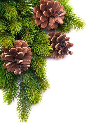 pine cones:  christmas frame with fir tree branch and christmas decoration  on white background Stock Photo