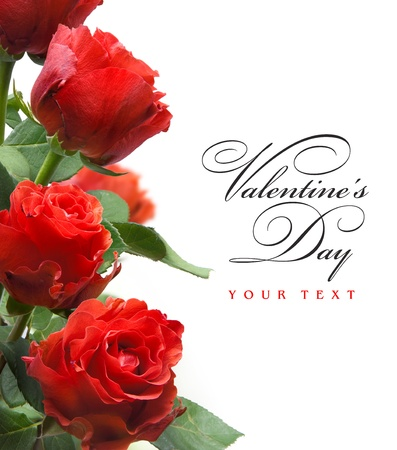 rose border: art valentines greeting card with red roses  isolated on white background Stock Photo