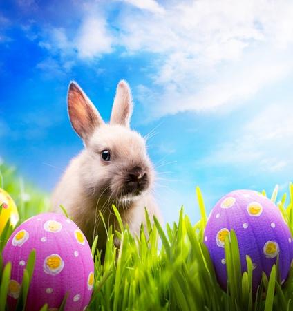 peu d'art Lapin de Pâques et les oeufs de Pâques sur l'herbe verte Banque d'images