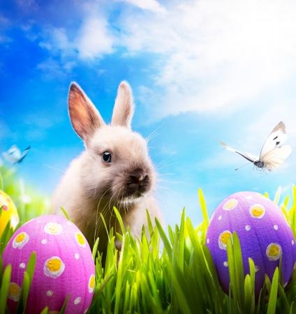 art Little Easter bunny and Easter eggs on green grass Stock Photo - 12393441