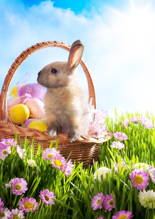 Easter basket with decorated eggs and the Easter bunny in the grass photo