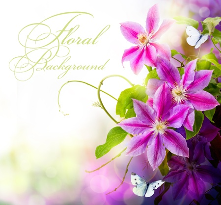 Abstract spring floral background  photo