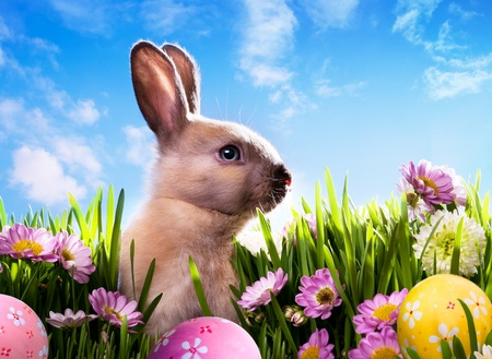 egg hunt: art baby Easter bunny on spring green grass Stock Photo