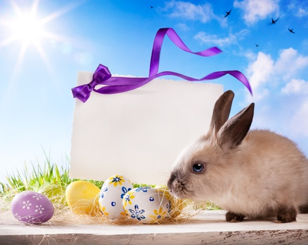 bunnies: Easter greeting card with the Easter bunny and Easter eggs  Stock Photo