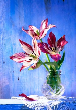tulips in vase on wood background  photo