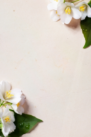 flowers border on old paper background photo