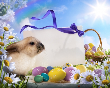 Easter card with Easter bunny and Easter eggs Reklamní fotografie
