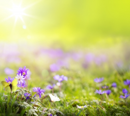 easter morning: abstract spring green background Stock Photo