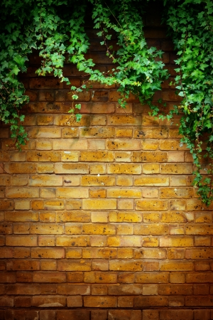 Art Tree in pot with brick wall background Stock Photo - 19296347