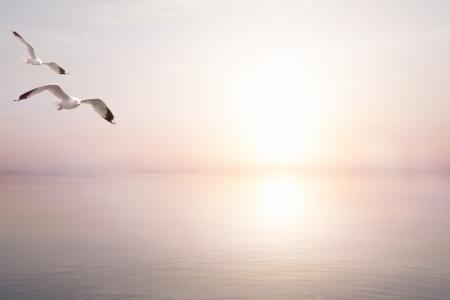 abstract beautiful light  sea summer background