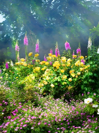 English Garden Images Stock Pictures Royalty Free English