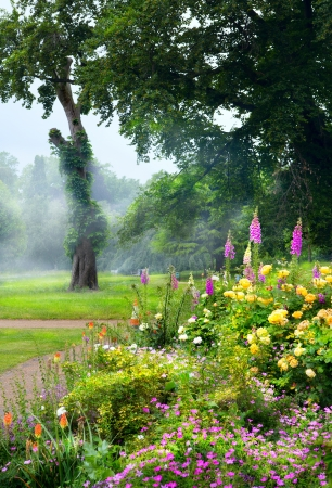 english garden: flowers in the morning in an English park
