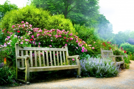 english garden: Art bench and flowers in the morning in an English park