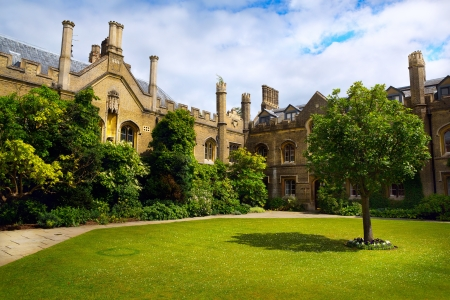 prestigious: Art Cambridge University College