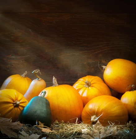 Art autumn Pumpkin thanksgiving background Reklamní fotografie - 22140124