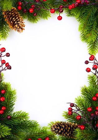 christmas berries: Cornice di Natale con bacche di abete e agrifoglio su carta sfondo bianco Archivio Fotografico