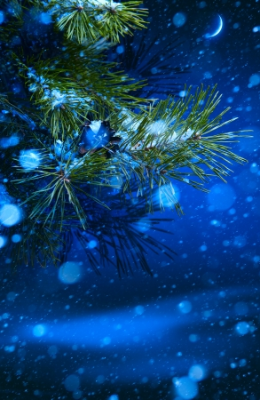 Christmas tree on night background photo