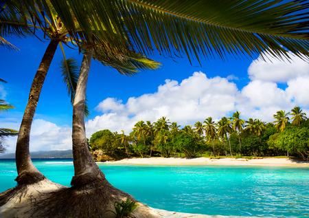 Art caribbean tropical sea  lagoon photo