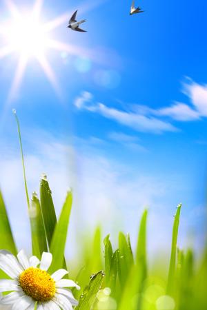 beautifu: abstracts beautifu spring background Stock Photo