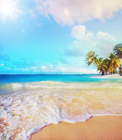 clima tropical: Arte de verano vacaciones en la playa del océano