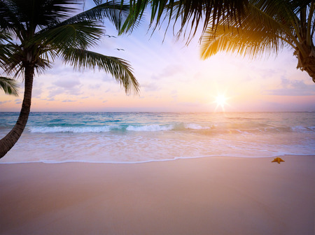 Art sunrise over the tropical beach photo