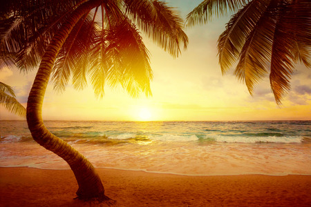 Arte Hermoso amanecer en la playa tropical photo
