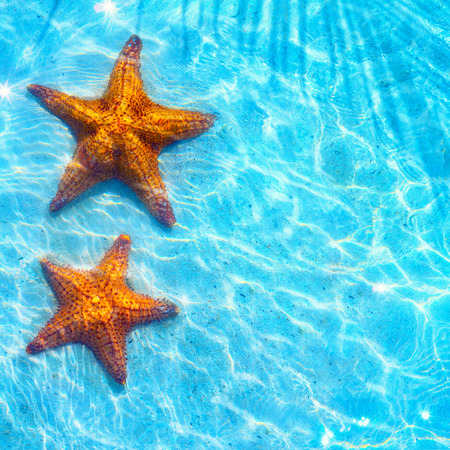 Blue sea Beach background with starfishes photo